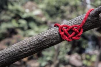 Christian Governance - The Cord Principle